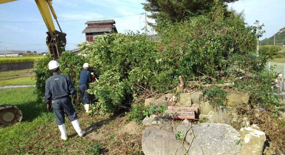 木を機械で切り倒している